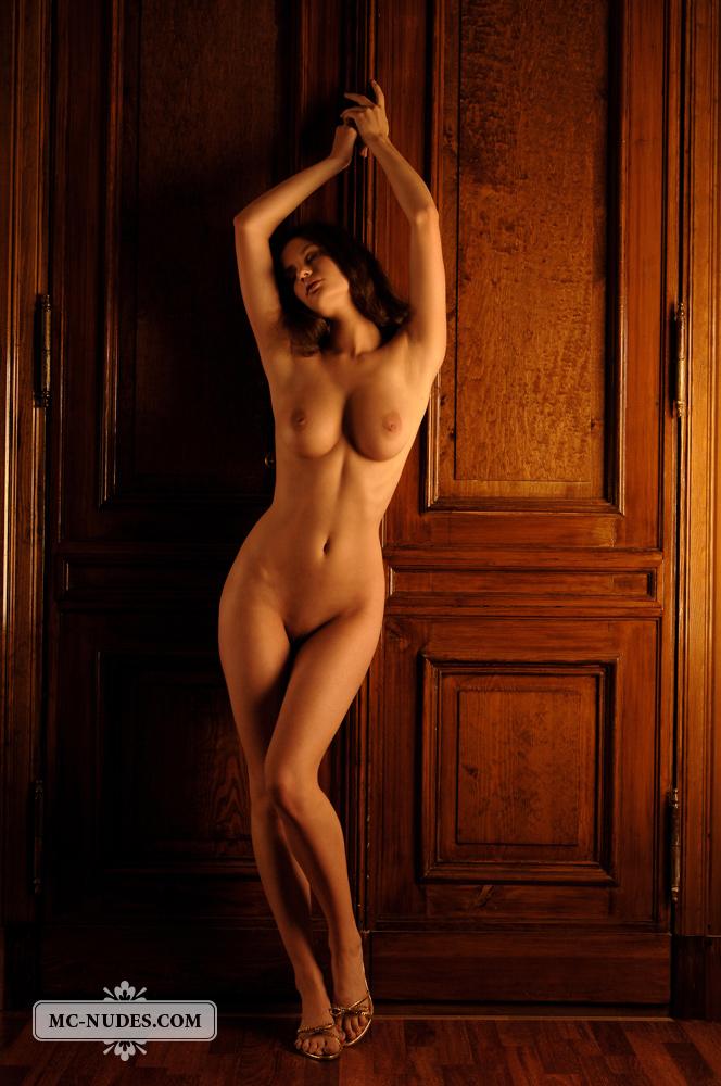 Женские фигуры фото ню 95555 фотография