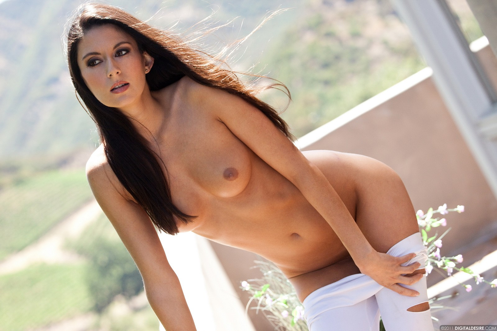Attractive Nikki Daniels Naked Png